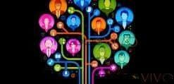 optimizar su campaña de Adwords